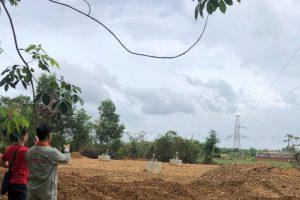 Khởi công cụm trang trại điện gió trên bờ lớn nhất Việt Nam